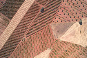 CATUAV assists in the control of agricultural subsidies in Madrid