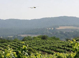 CATUAV explores the effects of a hailstorm over Artés vineyards