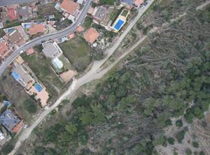 Catastrophic wind damage evaluation in Sant Boi de Llobregat